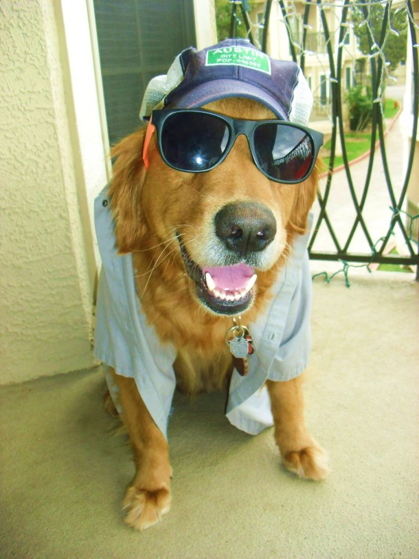 1 - Hipster Shiner